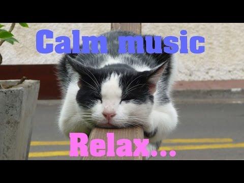 Смотреть клип Спокойная музыка без слов онлайн бесплатно в качестве