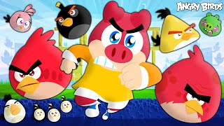Flonk com Angry Birds - Turma Mirim