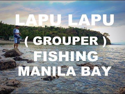 Lapu lapu (Grouper) Fishing Manila Bay Philippines @ Cay Subic Resort Ternate Cavite.