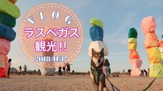 2018/11/17のVlogです☆ いつもご覧いただき本当にありがとうございます♡...