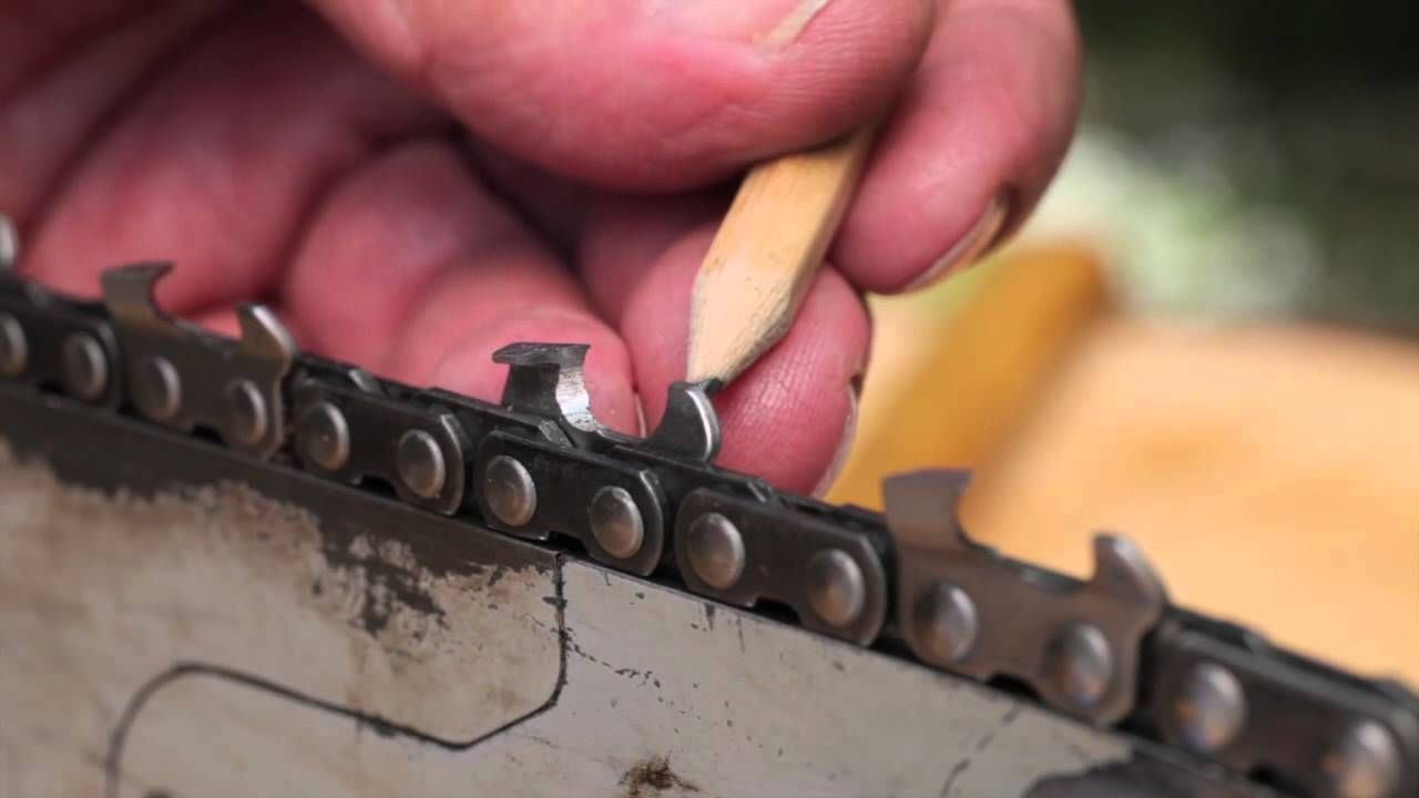 Sharpen a chainsaw chain tool tip 10 making sawdust how to sharpen a chainsaw chain tool tip 10 making sawdust how to hand sharpen a chainsaw chain youtube greentooth