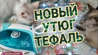 Новый утюг от Tefal / Обзор покупок / Турецкие стаканы для чая / Мои котики / Турецкое мороженое