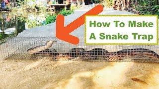 SIMPLE, CHEAP and EFFECTIVE SNAKE TRAP (VIetnam) Bẫy bắt rắn ĐƠN GIẢN mà HIỆU QUẢ-Phụ Đề Tiếng Việt