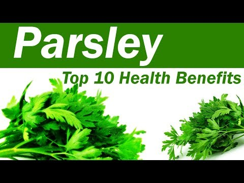 Top 10 Benefits of Parsley Parsley Leaves: Benefits and Uses Amazing Benefits Of Parsley