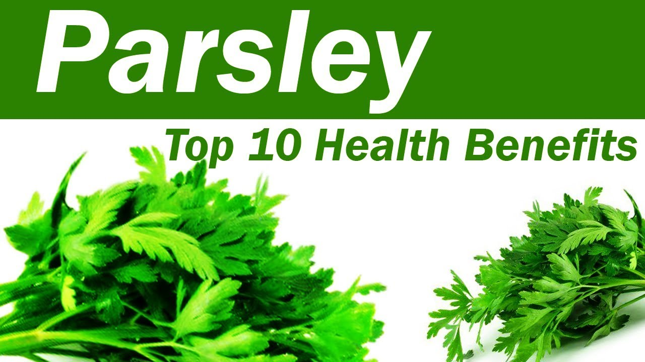 Parsley meaning in telugu images