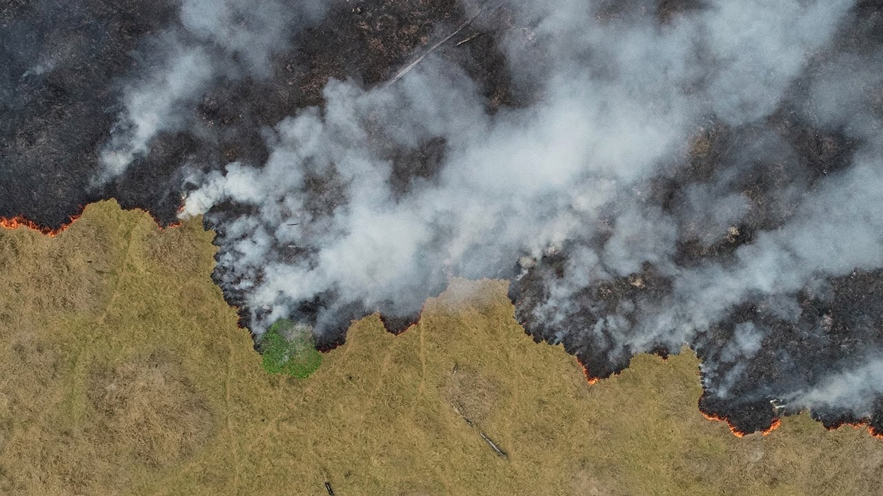 Brazil Rejects G7 Offer Of Aid For Amazon Rainforest Fires Youtube