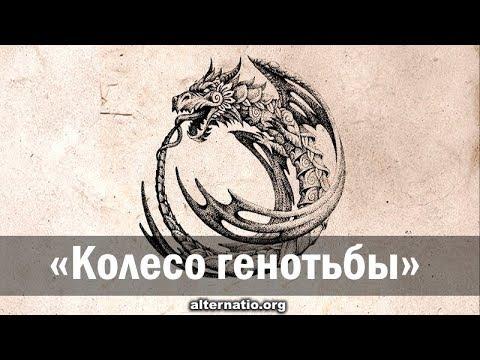 Андрей Ваджра. «Колесо генотьбы» 09.03.2019. (№ 51)
