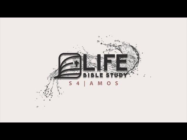 Life Bible Study S4 | Amos