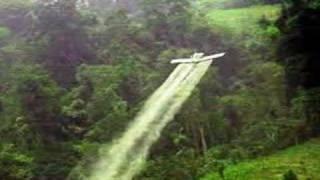 El glifosato del insensato. Fumigaciones Plan Colombia
