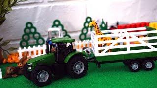 Трактор везет животных. Видео для детей. Дикие и домашние животные