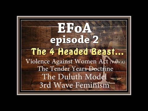 EFoA ep2 - 4 Headed Beast: 3rd Wave Feminism, The Duluth Model, Tender Years Doctrine, VAWA