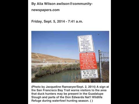 Debbie Vs. Duck Hunters (San Francisco Bay)