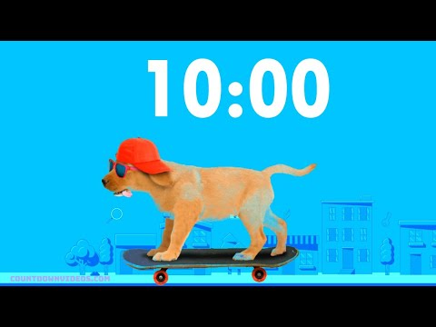 Puppy Dog on Skateboard ? 10 minute timer ? Happy Funky Background Music
