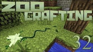 Zoo Crafting: Baby Black Rat Snake! - Episode #32