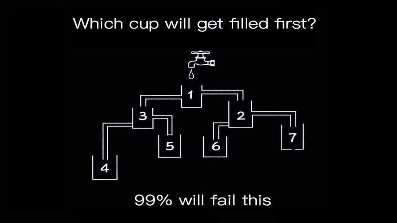 Image result for which cup fills up first