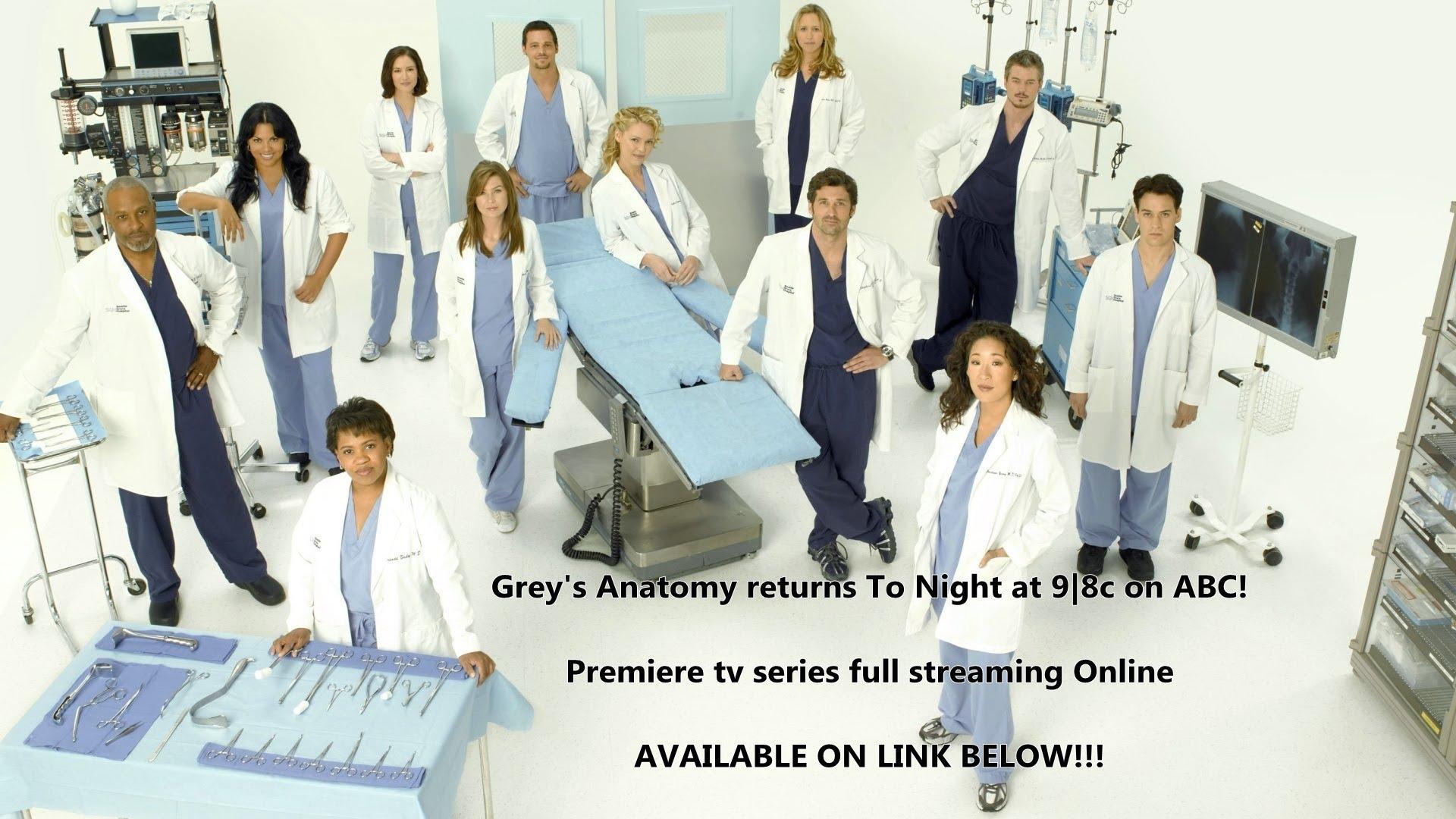 Free Stream Greys Anatomy Season 12 Episode 11 Live On Abc Online