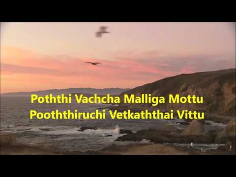 Pothi Vacha Malliga Mottu Karaoke For Male