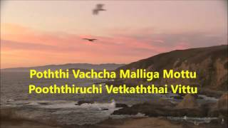 Pothi Vacha Malliga Mottu Karaoke for Male
