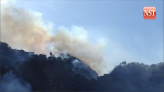 Large chunk of the forest at the Batu Caves limestone hill on fire