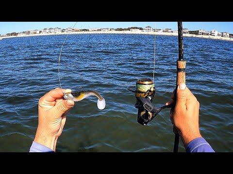 Fishing Small Jigs On Reef Bottom For Whatever BITES!