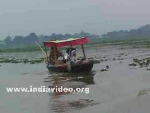 Lake Cruise in Rudrasagar, Udaipur