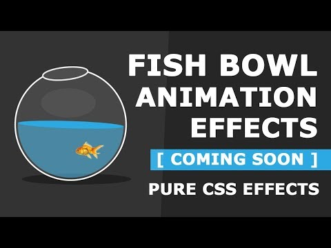 Pure CSS Fish Bowl Animation Effects - Coming Soon
