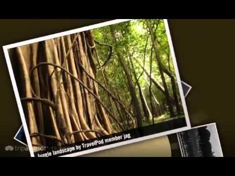 """Tefe and Mamiraua Reserve"" Jag's photos around Tefe and Mamiraua Reserve., Brazil (tefe brazil)"