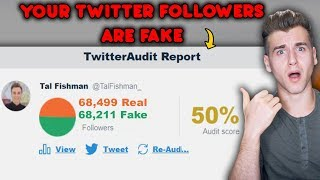 This Website Can See How Many Of Your Followers Are Fake