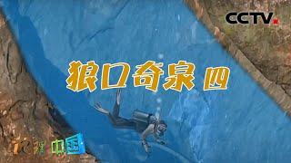 《地理·中国》 20201118 奇趣大自然·狼口奇泉 4| CCTV科教 - YouTube