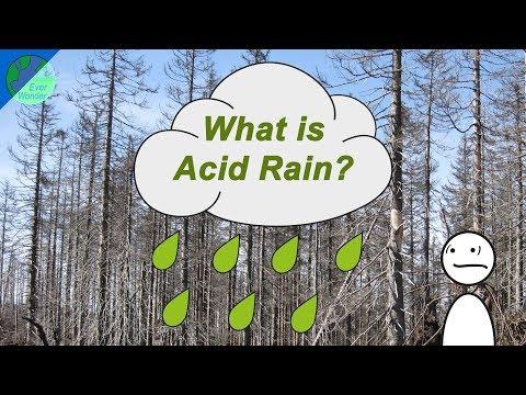 What is Acid rain?