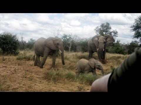 Reis Zuid Afrika & Swaziland - Deel 2 - videomontage by HMwebdesign