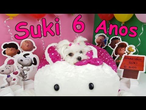 Festa de Aniversário 6 Anos da Suki