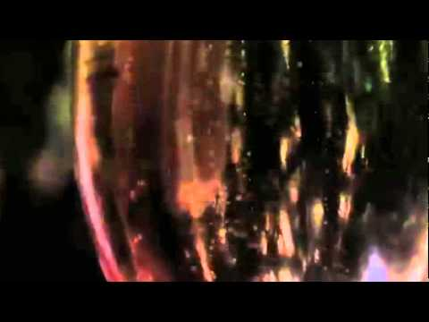 .SAK NOEL - LOCA PEOPLE (VIDEO OFFICIAL)