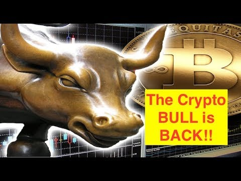 Cryptos BOOM! First Real Crypto BULL RUN in Over a Year! (Bix Weir)