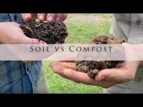 Compost versus Soil: What's the difference?