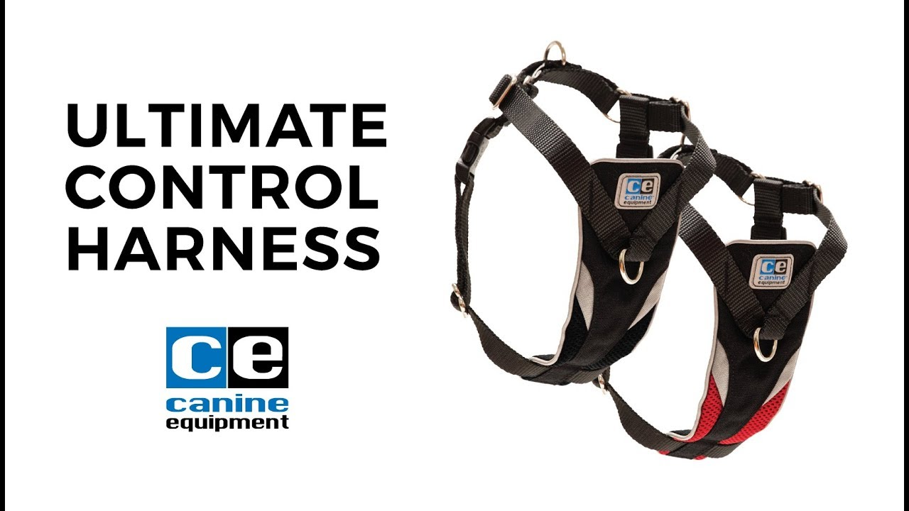 Canine Equipment - Use the