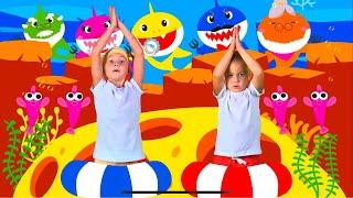Baby Shark Dance | Sing and Dance! | Animal Songs | Eva Songs
