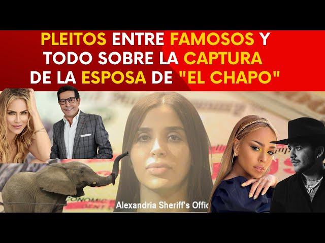NotiCreo#8: Le cayó la ley a #DareyCastro, Captura de Emma Coronel, Pepillo Origel vs. Aylin Mujica