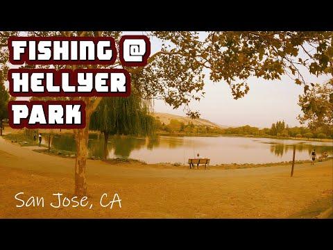 Fishing At Hellyer Park In San Jose CA | ITGETSREEL Episode 62