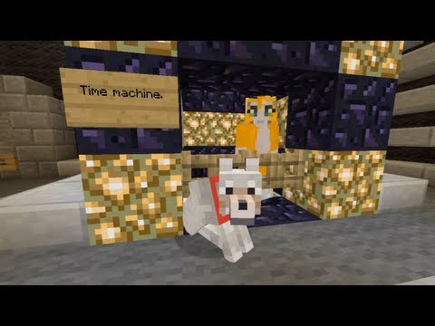 Minecraft Xbox - Cat To The Future [100]
