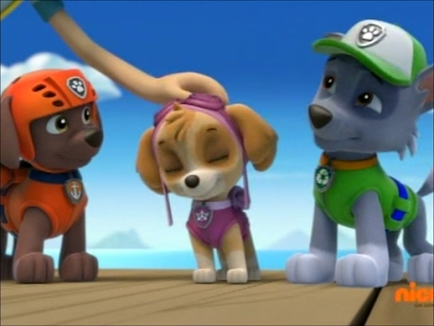 Paw Patrol Skye Zuma And Rocky Tribute For Saycheese000