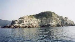 さわやか自然百景「高知 幸島」絶滅の危機にあるカンムリウミスズメの貴...