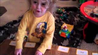 Teach Your Child To Read at 2 | Flash Cards