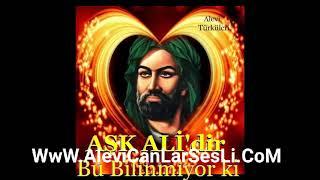 Ahmet Aslan Gönül Demedim Mi