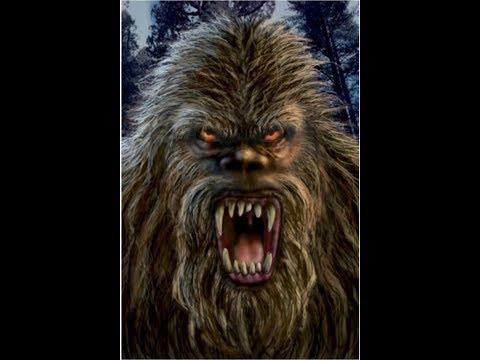 World Bigfoot Radio #53 ~ The LaFlore Horror/Bear
