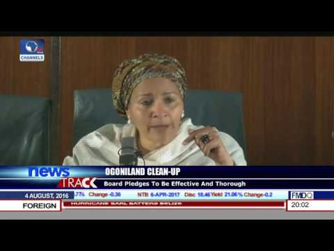 Ogoniland Clean-Up: Board Pledges To Be Effective And Thorough