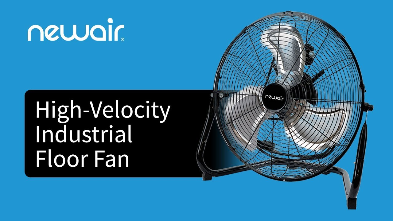 Floor Fan Stopped Working? Your Troubleshooting Guide | NewAir