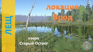 Русская рыбалка 4 - озеро Старый Острог - Лещ и эксперименты  Bream