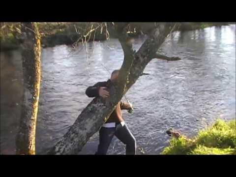 Wild Brown Trout Over 5lb Scotland