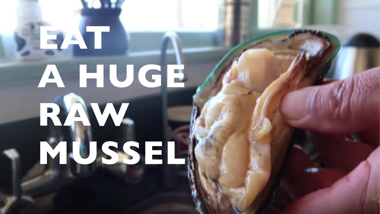 how to eat mussels youtube